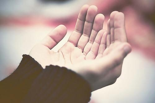 Karinca Duasi Bereket Duasi - Karınca - Rızık - Bereket Duası- Diyanet İşleri Başkanlığı Açıklaması