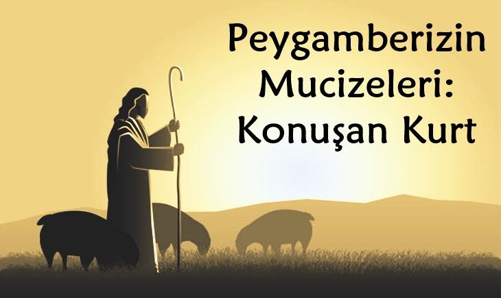 Peygamberizin mucizeleri
