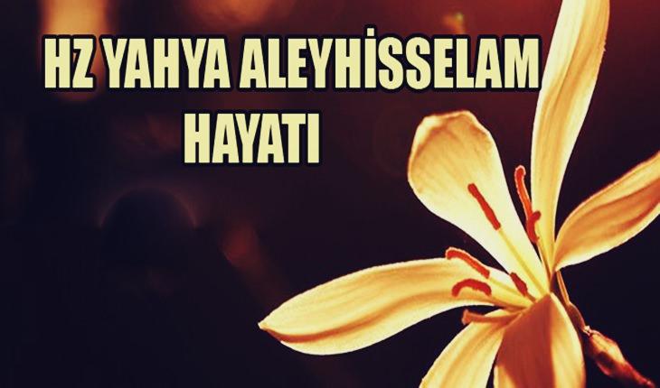 Yahya Peygamber