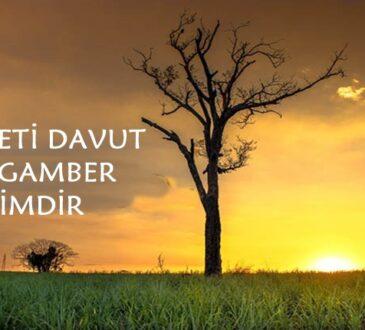 Davut peygamber